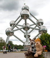 Atomium Brussels with Lion and Zebra